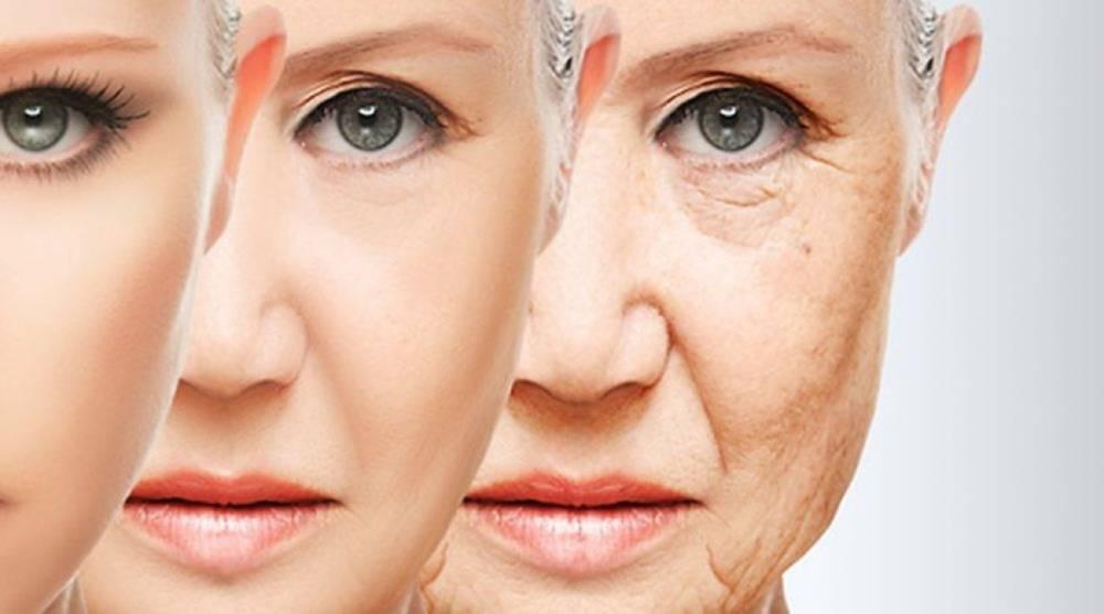 Υγιής γήρανση – ο ρόλος πρωτεΐνης & ενδυνάμωσης